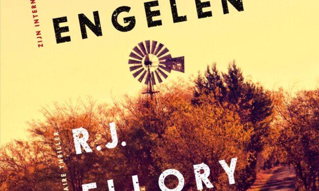 Een stil geloof in engelen – R.J. Ellory