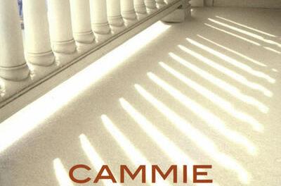 Buurtwacht – Cammie McGovern