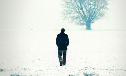 Verdwijnpunt – Arnaldur Indridason