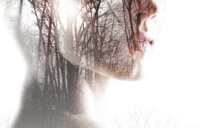 Meisje vermist – Tess Gerritsen
