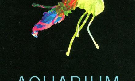 Aquarium – David Vann