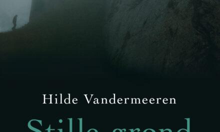 Stille grond – Hilde Vandermeeren