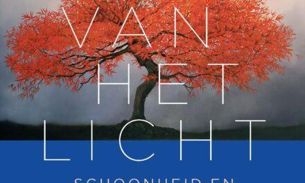 De stilte van het licht – Joost Zwagerman