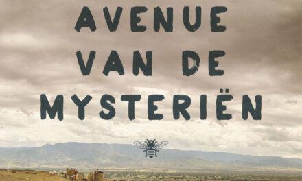 Avenue van de mysterien – John Irving