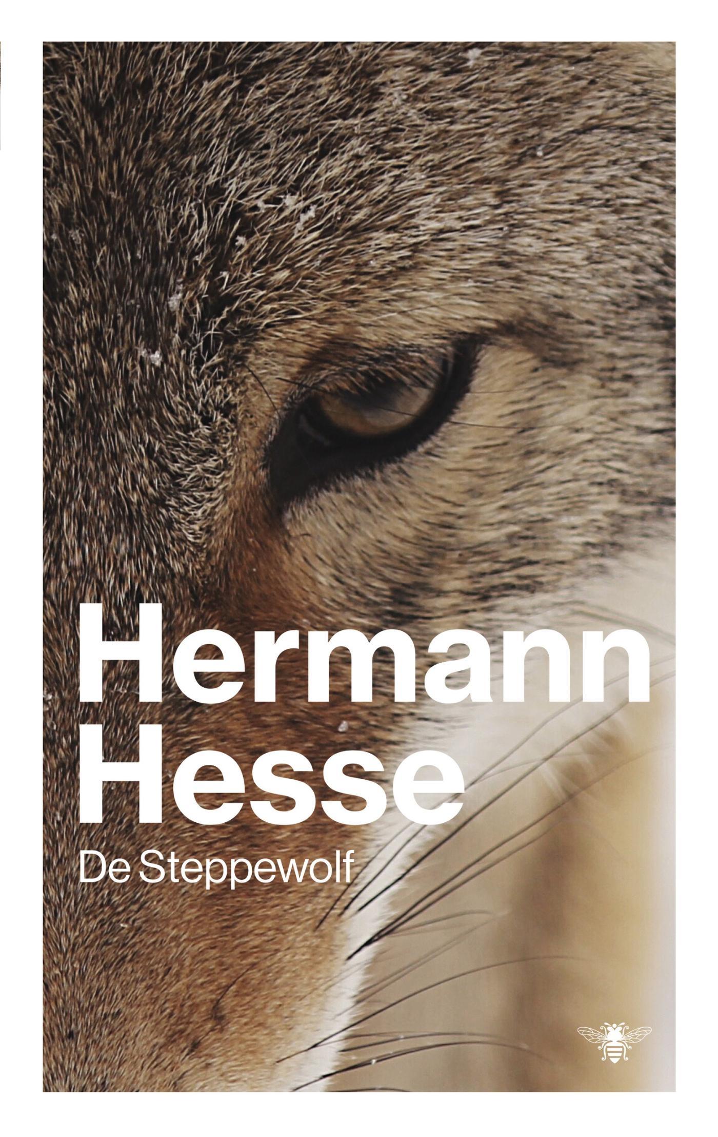 Steppewolf – Hermann Hesse