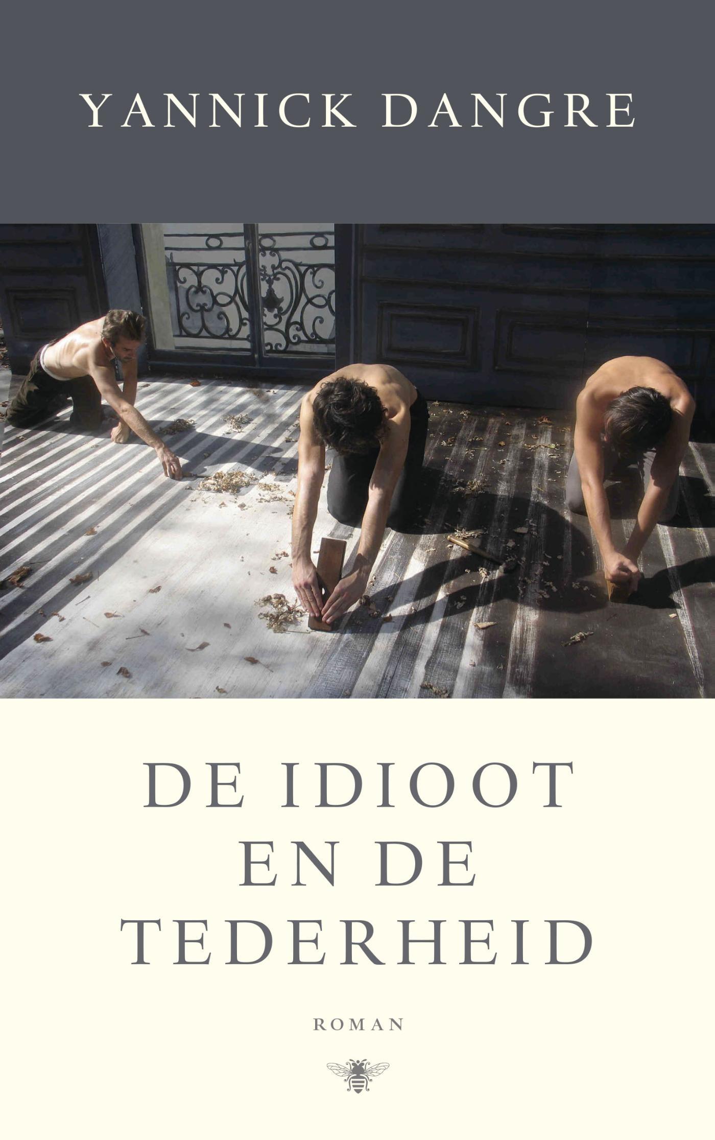 De idioot en de tederheid – Yannick Dangre