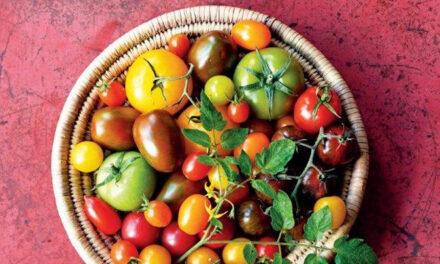 Tomaten – Jenny Linford