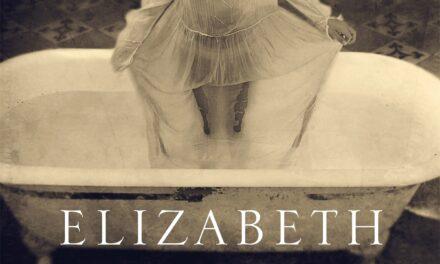 Alles houdt op te bestaan – Elizabeth Brundage