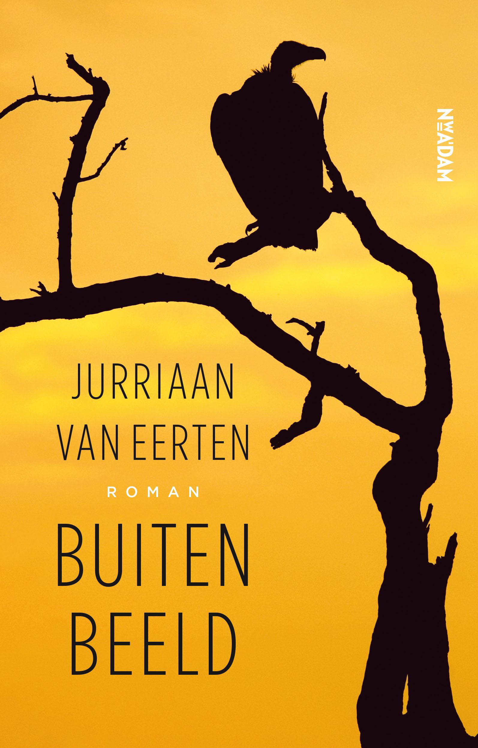 Buiten beeld - boekenflits.nl