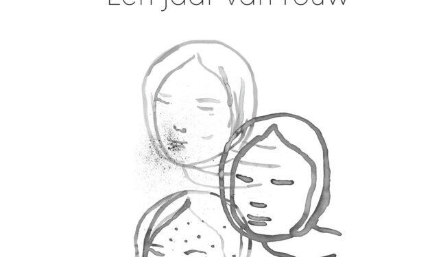 Stad vol ballonnen – Femke van der Laan