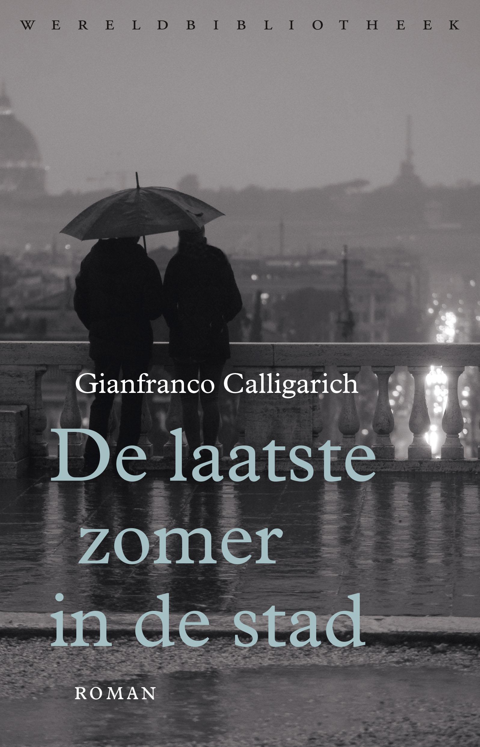De laatste zomer in de stad - boekenflits.nl