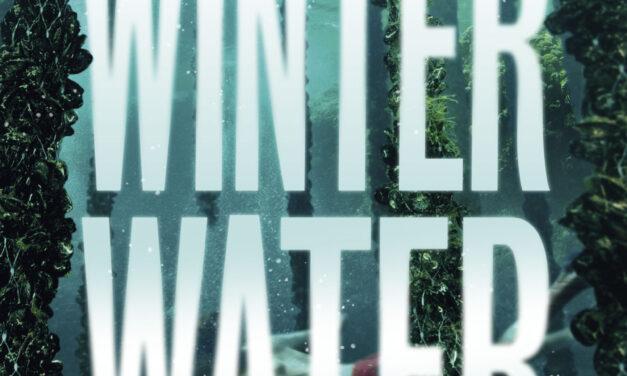 Winterwater – Susanne Jansson