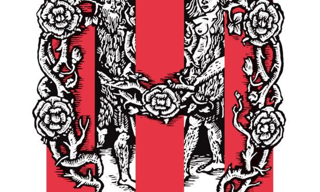 Wildevrouw – Jeroen Olyslaegers