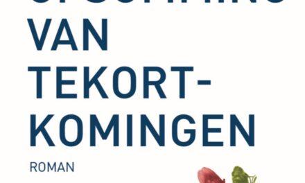 Een opsomming van tekortkomingen – Ine Boermans