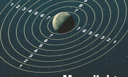 Maanlicht van een andere planeet – Herman Brusselmans