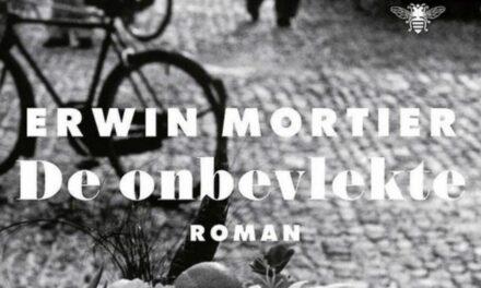 De onbevlekte – Erwin Mortier
