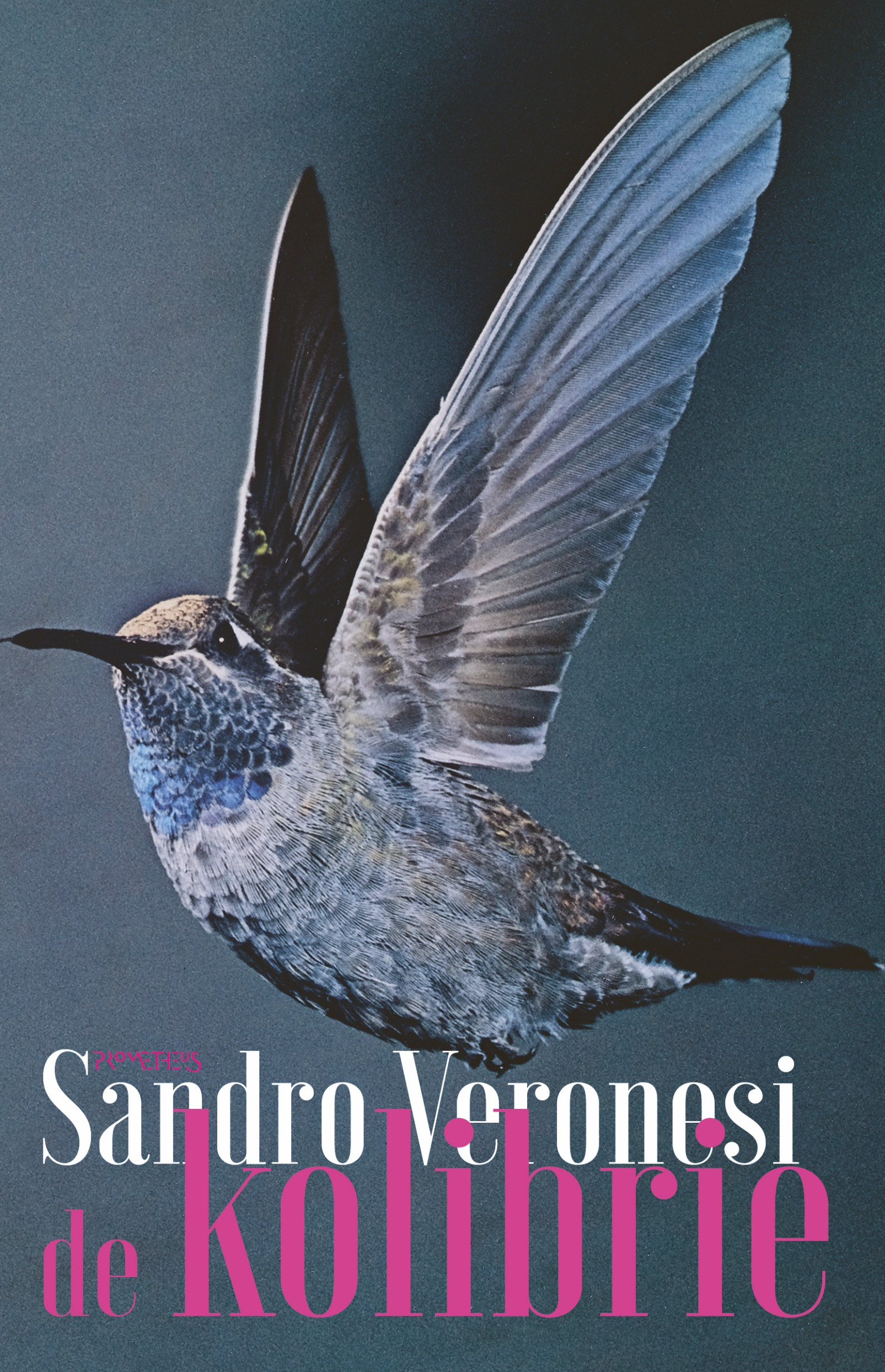Kolibrie - boekenflits