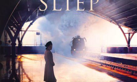 Terwijl Parijs sliep – Ruth Druart