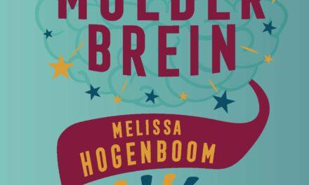 Het moederbrein – Melissa Hogenboom