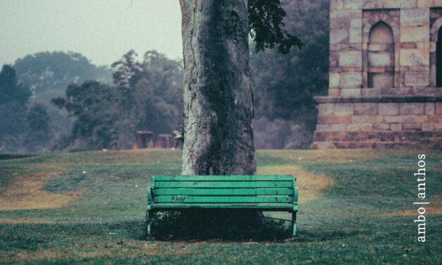 Identiteit – Milan Kundera