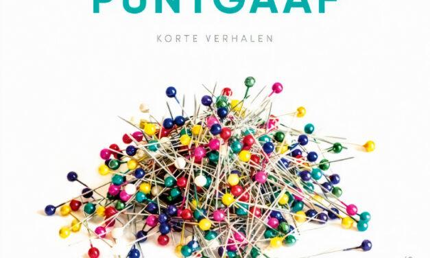Puntgaaf – Karin Slaughter